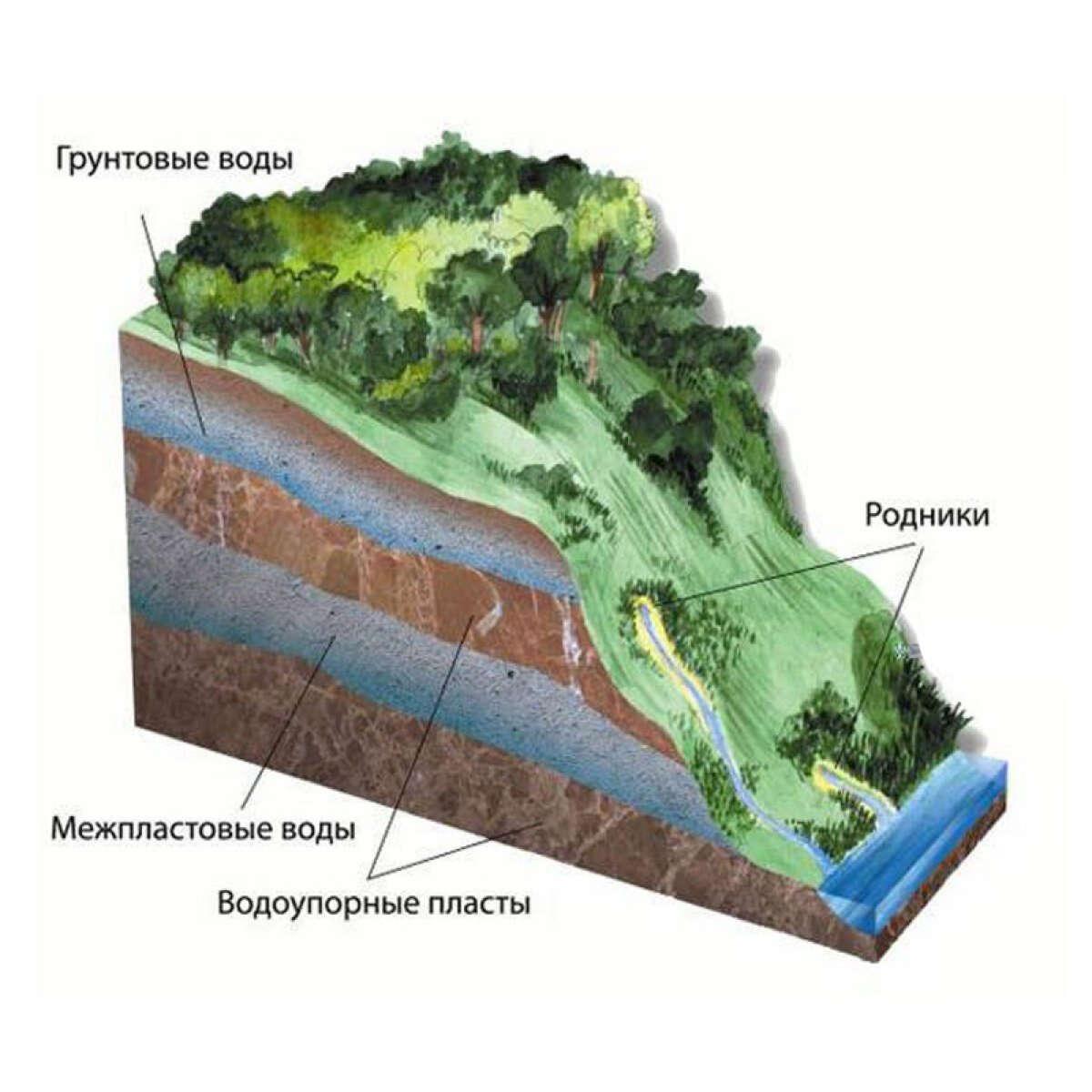 Какие есть пути проникновения подземных вод